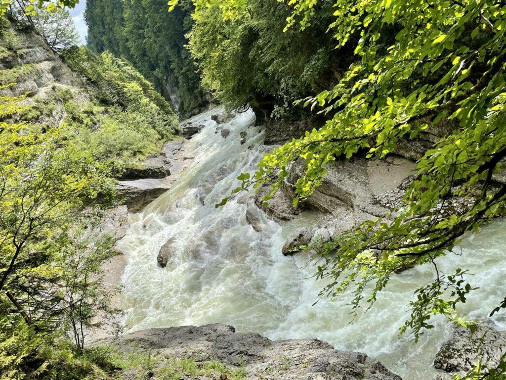 Sommerausflug Tiefenbachklamm 2021